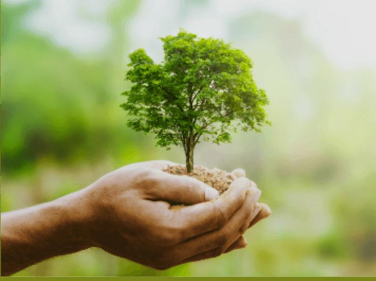 Environnement conférence